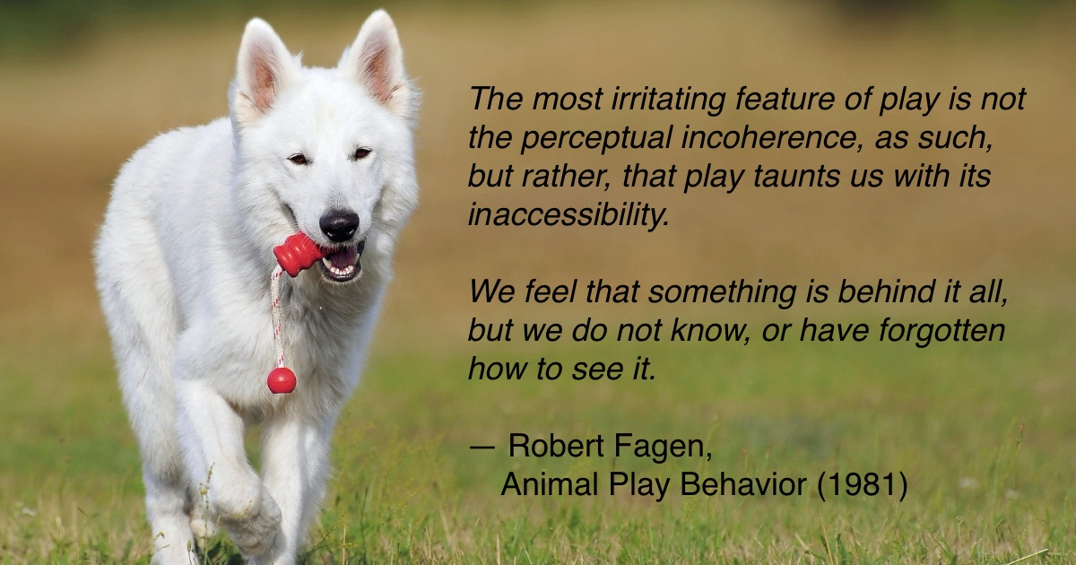 Robert Fagen quote on why play is important